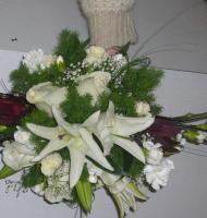 elena-flor11.jpg