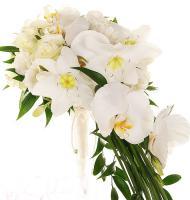 cvety5dinamo_12.jpg